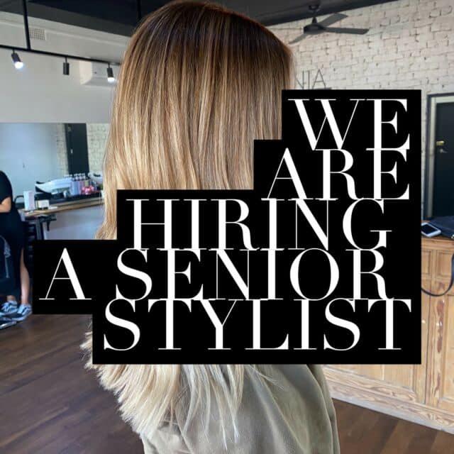 senior stylist
